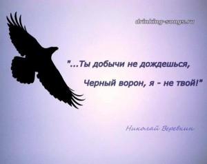 текст песни «Чёрный ворон»