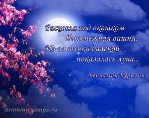 текст песни «Расцвела под окошком белоснежная вишня»