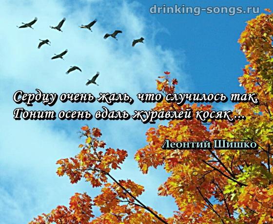 tam-gde-klen-shumit-nad-rechnoy-volnoy-v-originale-devkam-konchayut-v-pizdu-ne-vinimaya