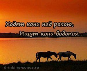 ходят кони над рекою текст песни