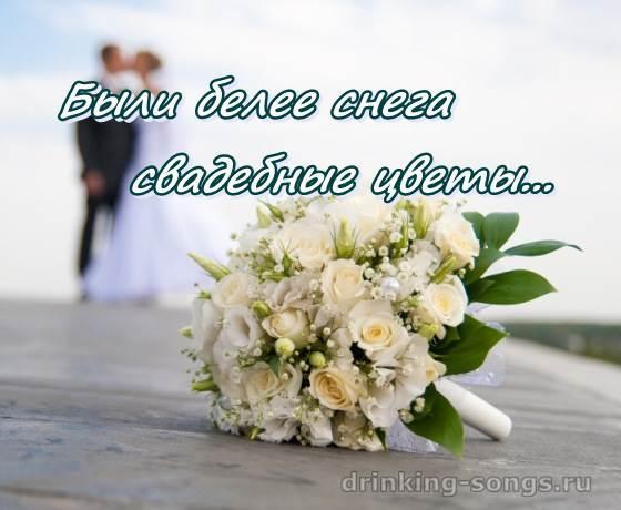 Цветы песня