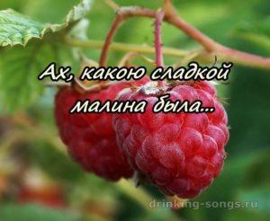 текст песни ягода малина