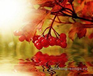 текст песни «Не грусти, калина, над водою»