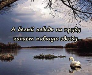 текст песни белый лебедь на пруду