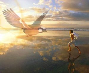 текст песни «Птица счастья завтрашнего дня»